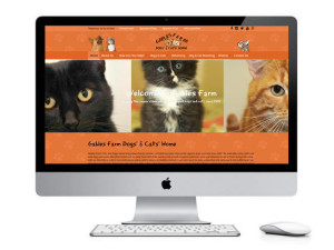 Website design Yorkshire
