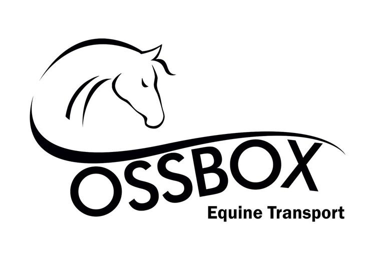 Logo Design Scarborough