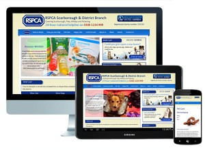 RSPCA WordPress Website Design